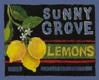Lemon Crate, Art Print by Nancy Overton 8x10
