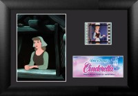 Cinderella Minicell Film Cell S1